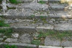 BELV11
