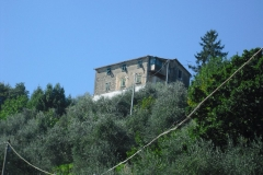 MONTALE13ter