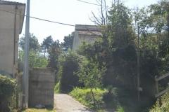 POMARA13